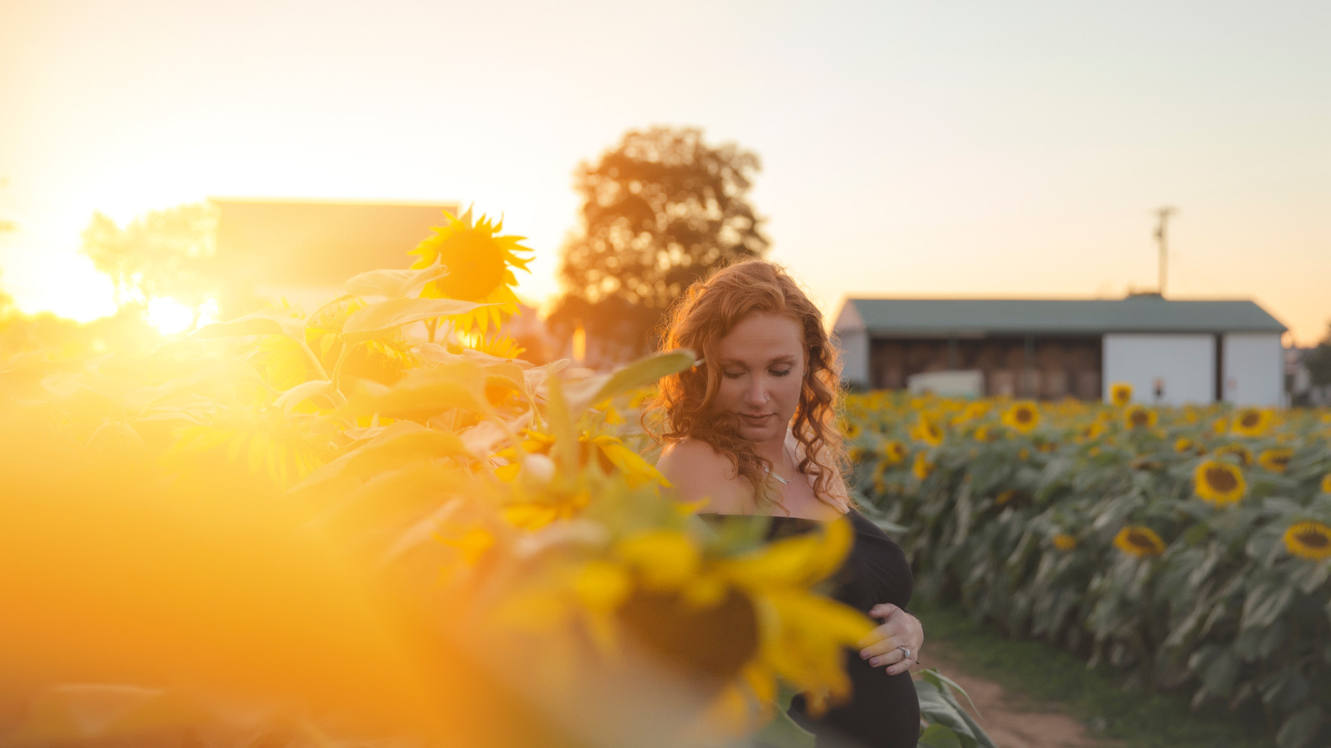 Jennifer Schaefer Photography-Harford County Photographer-Maternity-Photos-Sunflowers-Maryland