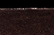 soil_PNG69.png