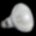 UVA-UVB-Mercury-Vapor-Reptile-Lamp-Light