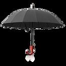 umbrella_PNG69212.png