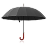 umbrella_PNG69212.png