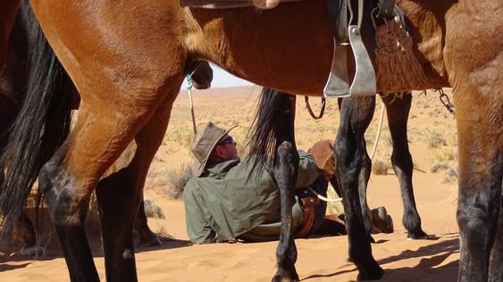 Andrew through legs, Wild Horses Safari, Simone Fahndrich