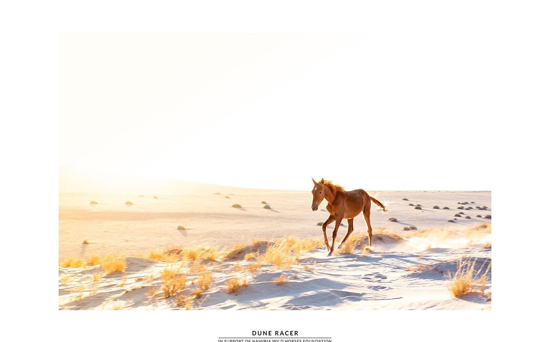 Dune Racer.jpg