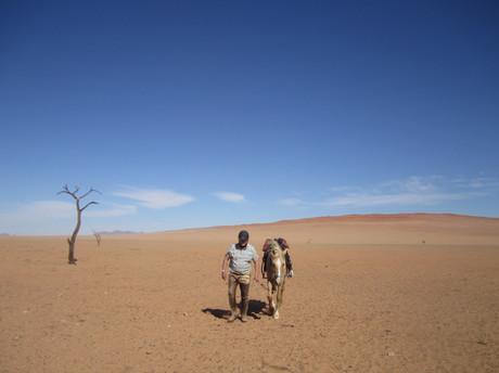 Lone Horseman, Namib Desert section of Epic Safari, Brian Green