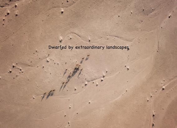 Dwalfed by landscapes