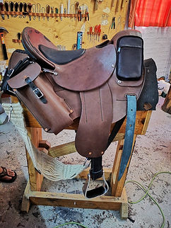 new Saddle.jpg