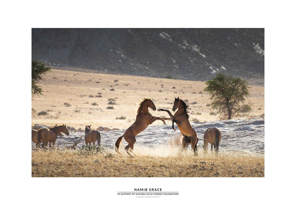 NamibGrace.jpg