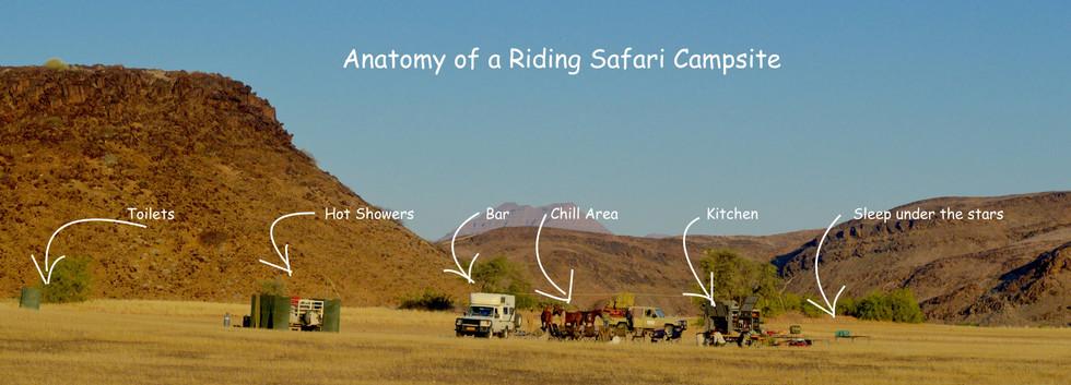 Camp Anatomy