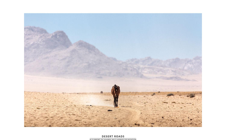 DesertRoads.jpg