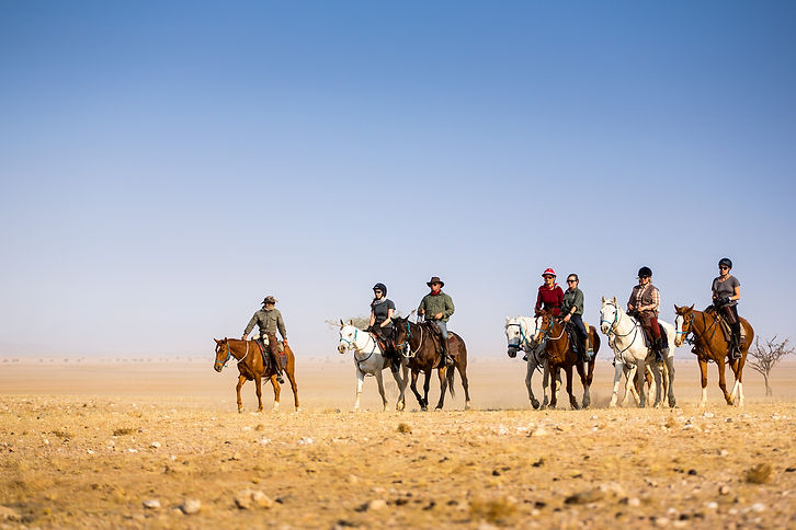 Namib Desert riders2.jpg