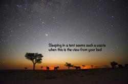 Camp_StarryNight