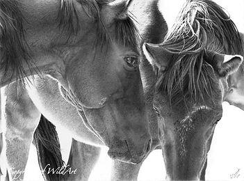 Two Friends at the Waterhole.jpg
