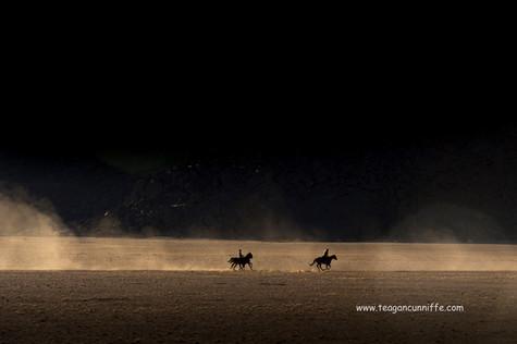Dusty Canter, Wild Horses Safari, Teagan Cunnliffe