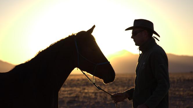 Andrew in Silhouette, Wild Horses Safari, Tony Marshall