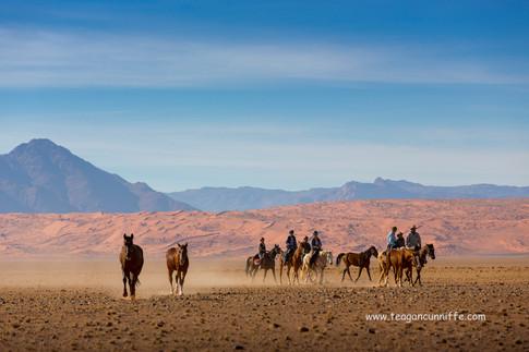 Koichab Dunes, Wild Horses Safari, Teagan Cunnliffe