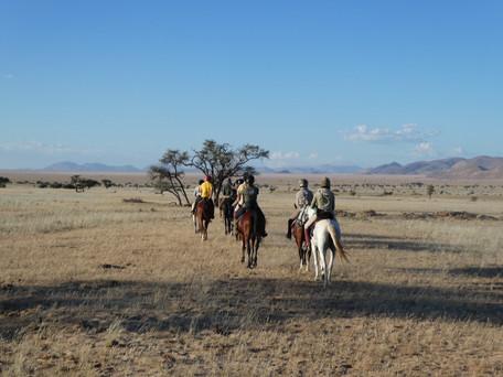 Namib Grassland, Namib Desert Safari, Wendy Minor