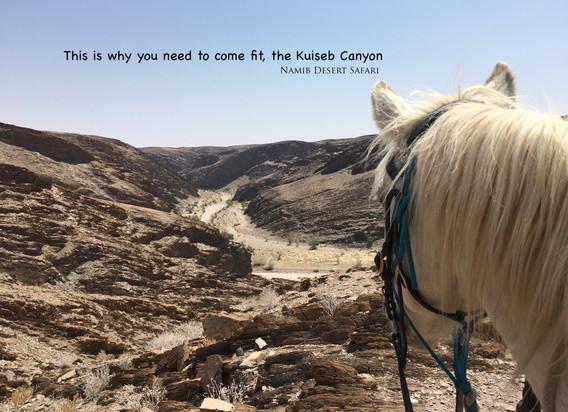 The Kuiseb Canyon