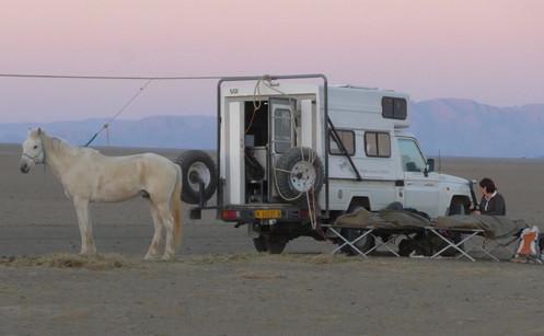 Life on Safari,SandraC