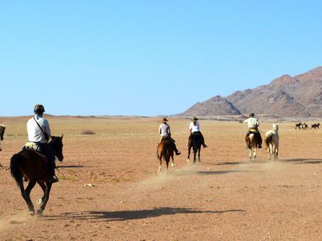 Ancient Desert Pathways