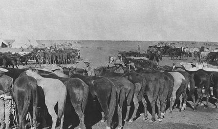 Union Troops at Garub.jpg