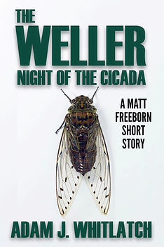 Night of the Cicada Cover.jpeg