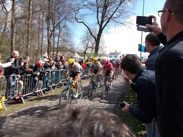 Cycling Paris Roubaix