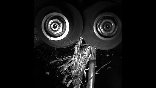 360 CHAINROLL Chopping Stalks.jpg
