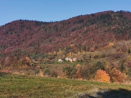 Główny Szlak Beskidu Wyspowego: Lubogoszcz-Szczebel-Luboń Wielki-Potaczkowa-Adamczykowa (Dzień 8)