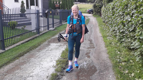 Relacja Główny Szlak Beskidzki: Krościenko nad Dunajcem - Cyrla (Dzień 19)