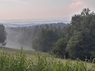 Relacja Główny Szlak Beskidzki: Chata w Przybyszowie - Baza namiotowa Rabe (Dzień 24)