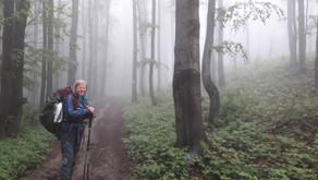 Relacja Główny Szlak Beskidzki: Wachałowski Wierch - Iwonicz-Zdrój (Dzień 4)