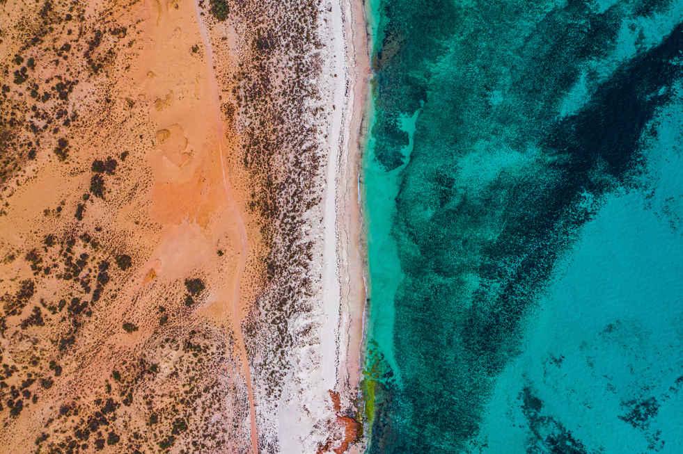 Desert Meets Reef