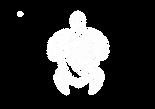 turt white.png