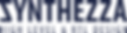 Synthezza logo navy.png