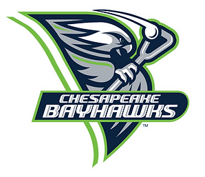 Bayhawks Alternate Logo web.png