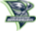 Bayhawks Alternate Logo.png