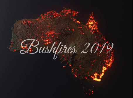 Australia's Bushfires: Aftermath and Recuperation