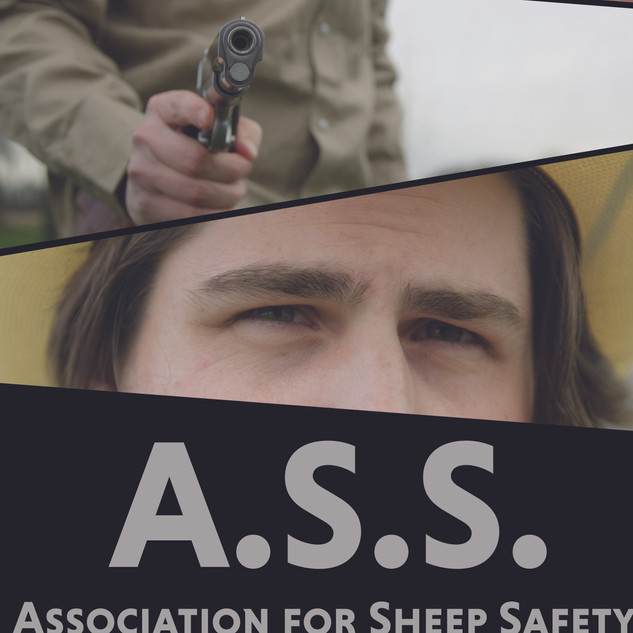 """Association for Sheep Safety"""