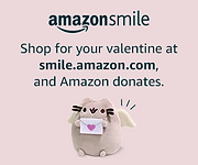 Amazon-VAL_300x250._CB423657073_.png
