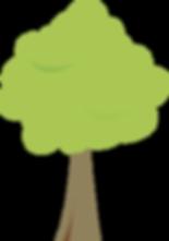 SCDAA Tree.png