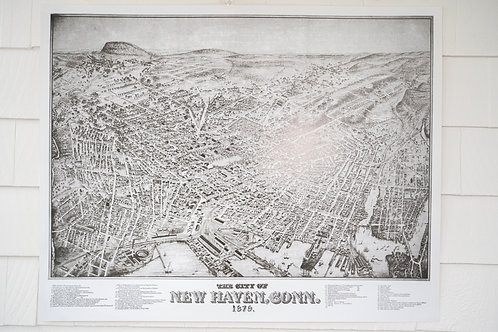 1879 Birds Eye View of New Haven