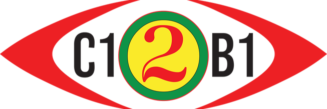 C12B1.png