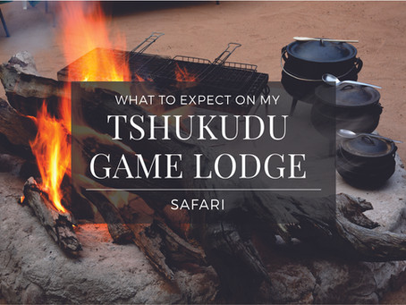 What to expect on my Tshukudu Safari