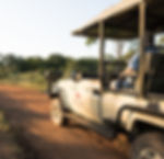 Safari Reinhardt Game Drives and Bush Wa