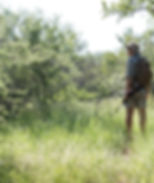 Safari Reinhardt Game Drives and Bush Wa