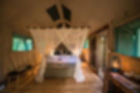 Bundox Superior Tent 3.jpg
