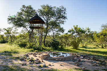 Boulders Bush Lodge 3 (59 of 80).jpg