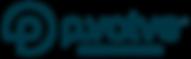 5_Pvolve_HorizontalLogo_RGB_DarkTeal–R-0