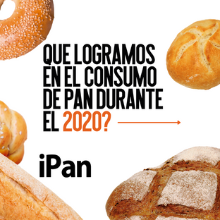 RETROSPECTIVA iPan borrador 2020.png
