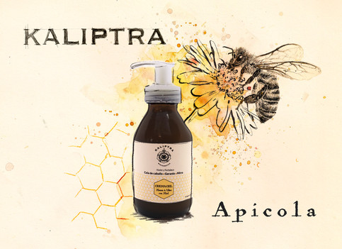 Kaliptyra Apicola